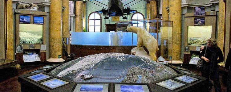 The Museum of Arctic & Antarctic, Saint-Petersburg image