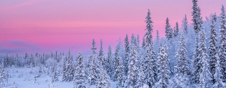 Winter landscapes on the way image