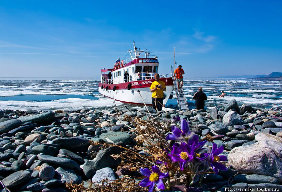Following the melting ice image
