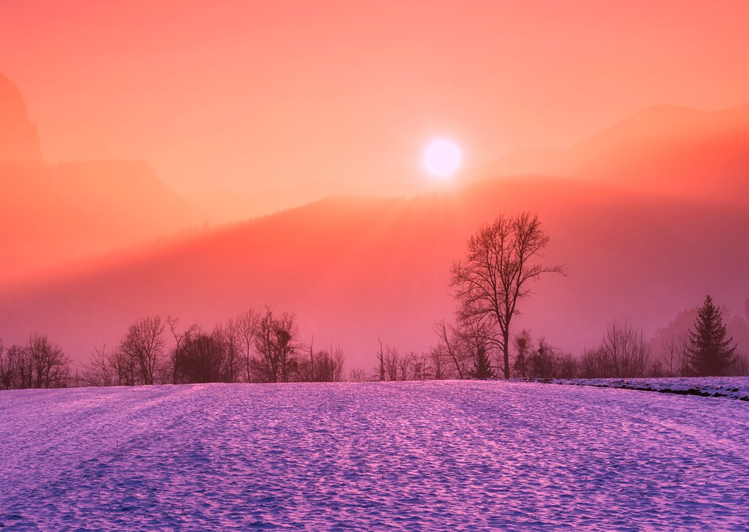 WINTER LANDSCAPES image
